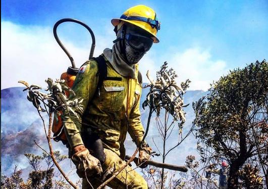 Profissões que saem da zona de conforto: bombeiros