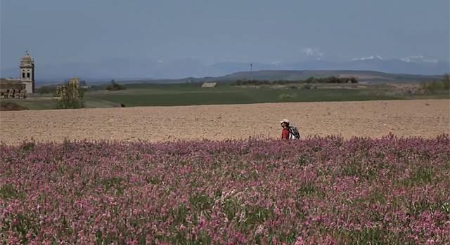 5 filmes sobre Caminho de Santiago de Compostela que servem como inspiração