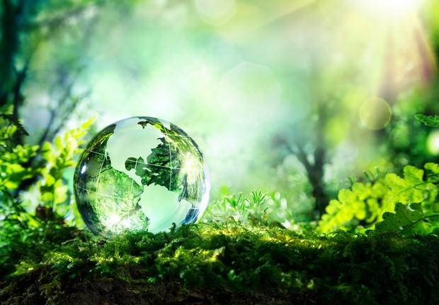 3 fotos para refletir sobre a degradação do meio ambiente